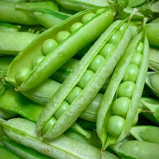 うすいえんどう 約1kg えんどう豆 碓井豌豆 エンドウマメ えんどうまめ(野菜)