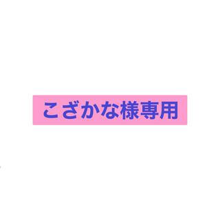 専用ページ(遊園地/テーマパーク)
