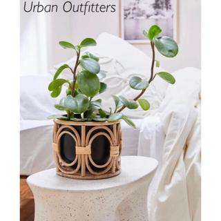 ロンハーマン(Ron Herman)の新品 Urban Outfitters プランター&バンプカバー(プランター)