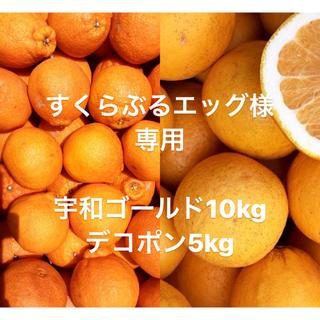 すくらんぶるエッグ様 専用 宇和ゴールド 河内晩柑 10kg デコポン5kg(フルーツ)
