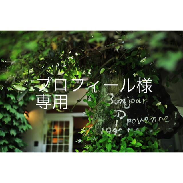 プロフィール様専用 ハンドメイドのフラワー/ガーデン(ドライフラワー)の商品写真