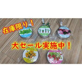 ハーブ&ベジ ミニ 栽培キット 5種類セット(その他)
