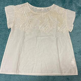グローブ(grove)のカットソーフレンチ袖(Tシャツ/カットソー(半袖/袖なし))
