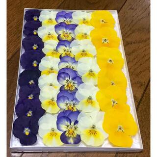 ⑧  銀の紫陽花が作った大人色ビオラのドライフラワーです(ドライフラワー)
