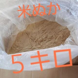 【大量】自宅精米 米ぬか 米糠 5キロ 80サイズ(米/穀物)