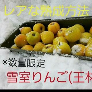 数量限定☆雪室りんご  王林家庭用3kg(フルーツ)