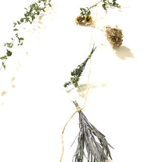 ハンドメイド 自然素材のグリーンガーランド  ナチュラル 花材 素材 L(ドライフラワー)