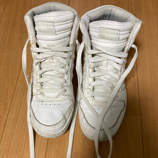 アディダス(adidas)のアディダス adidas ハイカット 白(スニーカー)
