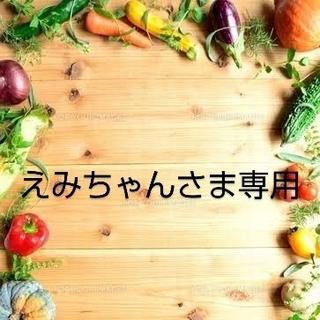 えみちゃんさま 専用  乾燥野菜 おまとめ(野菜)