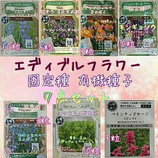 エディブルフラワー 専用種子 固定種 家庭菜園 野菜の種 水耕栽培(野菜)