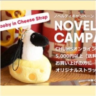 チャムス(CHUMS)のCHUMS ノベルティ ストラップ ブービー チーズ チャムス(ノベルティグッズ)