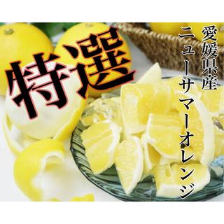 ふわっとジューシー!爽やかな美味しさ♩【ニューサマーオレンジ】特選 2L 5kg(フルーツ)
