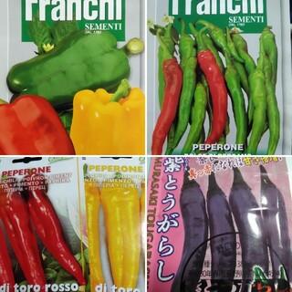イタリア野菜の種など カラフルなピーマン パプリカ オプションハバネロ交換(その他)