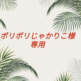ぽりぽりじゃかりこ様専用(その他)