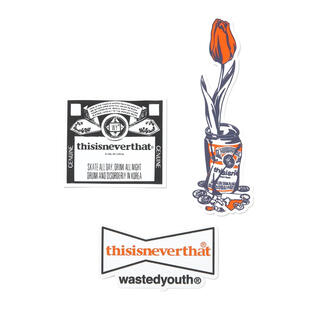 GDC - thisisneverthat wasted youth Sticker Set