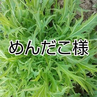 めんだこ様専用(野菜)