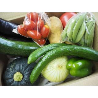 農家直売 野菜詰合せ 80サイズ 送料込み 熊本産①(野菜)