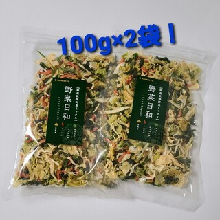 国産乾燥野菜ミックス 100g 2袋 (野菜)