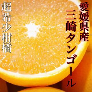 あまあまトロトロ!!酸味なしっ!!【三崎タンゴール】2Lサイズ 5kg(フルーツ)