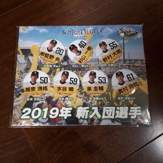 福岡ソフトバンクホークス - 非売品 ソフトバンクホークス 2019年新人選手7人 缶バッチ 甲斐野選手他