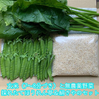 玄米(7〜8分づき)と無農薬野菜*採れたて絹さや&ほうれん草のセット*詰め合わせ(野菜)