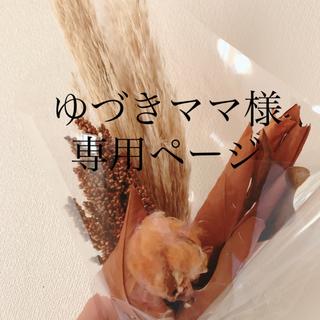 ゆづきママ様専用ページ(第1便)(外出用品)