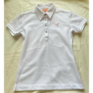 プーマ(PUMA)のPUMA  プーマ ポロシャツ レディース  ゴルフ(ポロシャツ)