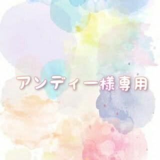 アンディー様専用(CD/DVD収納)