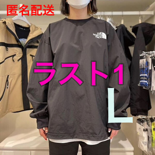 THE NORTH FACE - 黒L☆ノースフェイス カットソー  ALBANY CREWNECK ロンT