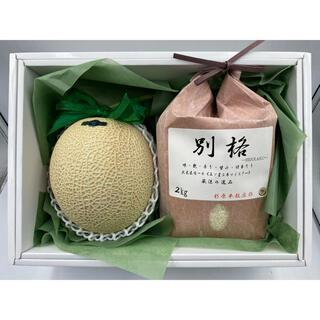 此花区コラボ商品✨静岡県産クラウンメロン1玉 白等級約1.5kg&五つ星別格米(フルーツ)