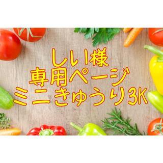 ★しい様専用ページ ミニきゅうり3K(野菜)
