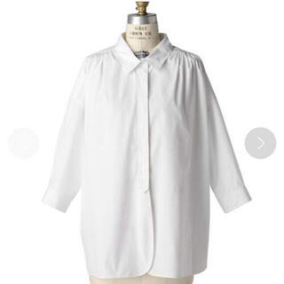ドゥロワー(Drawer)のDrawer  コットンホワイトカラーシャツ 2020(シャツ/ブラウス(長袖/七分))
