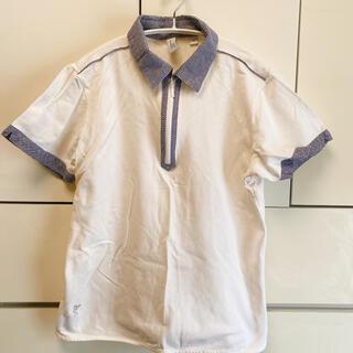 アシュワース(Ashworth)のアシュワース ゴルフウェア ashworth ポロシャツ(ウエア)