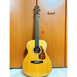 Guitar Morris F 35(アコースティックギター)