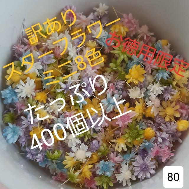 訳あり80スターフラワーミニ8色 400個以上 ハンドメイドのフラワー/ガーデン(ドライフラワー)の商品写真