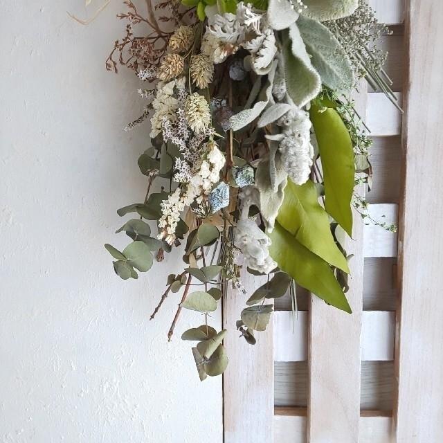 専用*ラムズイヤー&アジサイ ドライフラワースワッ ハンドメイドのフラワー/ガーデン(ドライフラワー)の商品写真