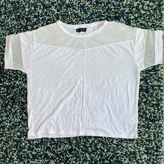 アンビー(ENVYM)のENVYM 春夏トップス(Tシャツ(半袖/袖なし))