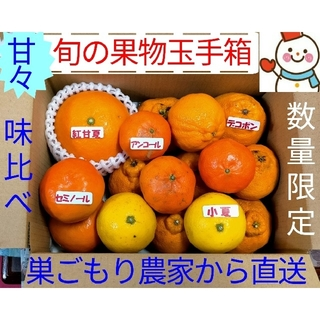 GW 特選ラクマ価格❗果物玉手箱♥お手軽に味比べ♥巣ごもり農家雪だるまから(フルーツ)