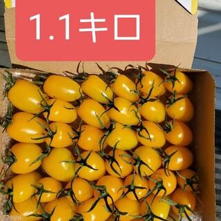 宮崎県産イエローアイコ(野菜)