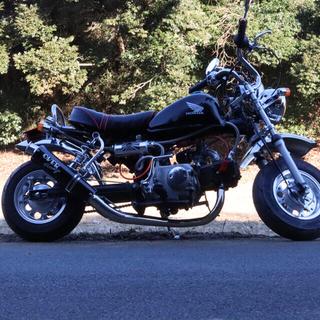 ホンダ - ホンダ モンキー Z50J 88cc