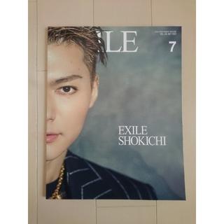 エグザイル(EXILE)の《非売品ポストカード付き》月刊EXILE 2019年 7月号 VOL.136(音楽/芸能)