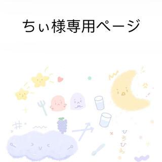 ちぃ様専用ページ 口紅入れ プラダ 一点(ポーチ)