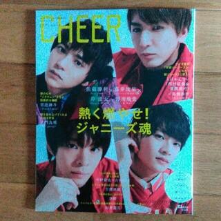 タカラジマシャ(宝島社)のはるか様専用 CHEER  Vol.9 切り抜き(音楽/芸能)