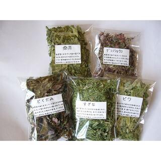 お試し野草茶  定番の5種類セット ビワ・桑・どくだみ・すぎな・ゲンノショウコ(茶)