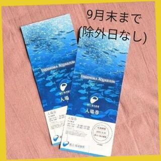 新江ノ島水族館  入場券  大人 2枚(水族館)
