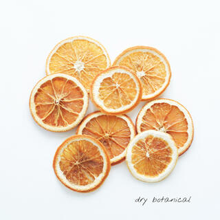 ドライオレンジ  8cut / 花材 ハンドメイド(ドライフラワー)