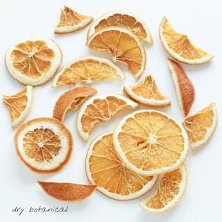 ドライオレンジ 形いろいろ / 花材 ハンドメイド 素材(ドライフラワー)