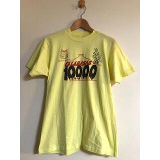 ダブルアールエル(RRL)の80s ビンテージ Hanes マラソン コヨーテ Tシャツ M xpv (Tシャツ/カットソー(半袖/袖なし))