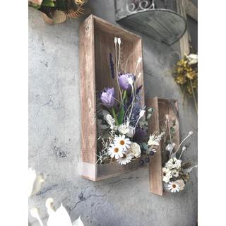 咲きこぼれるSpring flowers/Lサイズウォッシュパープル*母の日に♡(ドライフラワー)