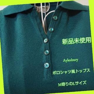 アリスバーリー(Aylesbury)のタグ付き新品未使用 Aylesbury ポロシャツ風トップス(ポロシャツ)